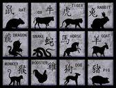 китайский зодиак символы — Стоковое фото