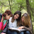 3 Girls Reading Together - Stock Photo