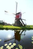Větrný mlýn v holandsku — Stock fotografie
