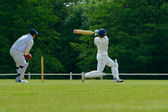 Giocatore di cricket — Foto Stock