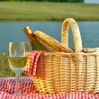 Picnic Basket and Glass of Wine — Stock Photo