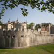 Tower of london — Stockfoto #5652888