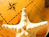 Starfish and the globe — Stock Photo