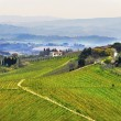 Tuscany landscape — Stock Photo #6321189