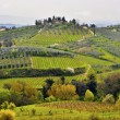 Tuscany landscape — Photo #6321191