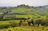 Paysage de toscane — Photo