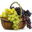 Clusters of yellow and black grapes in a basket on a white backg — Stock Photo