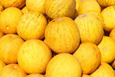 Bunch of fresh ripe yellow melon, closeup — Stock Photo