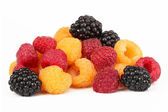 Berries ripe blackberry black, yellow and red raspberries — Stock Photo