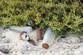 Rubbish on a beach — Stock Photo