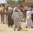 Bedouin traders at camel market — Stock Photo #5400062