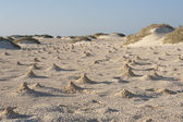 Dunes and mounds made by fiddler crabs on beach — Stock Photo
