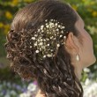 Stock Photo: Ornate hair style on bride