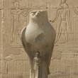 Statue of the falcon god at the Temple of Edfu — Stock Photo
