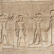 Hieroglyphic carvings on Egyptitemple wall — Stock Photo #5631405