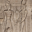 Hieroglyphic carvings on an Egyptian temple wall — Stock Photo #5631428