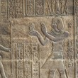 Hieroglyphic carvings on an Egyptian temple wall — Stock Photo #5631605