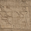 Hieroglyphic carvings on an Egyptian temple wall — Stock Photo #5631683
