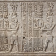 Hieroglyphic carvings on Egyptitemple wall — Stock Photo #5632443