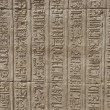 Hieroglyphic carvings on an Egyptian temple wall — Stock Photo #5632471