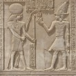 Hieroglyphic carvings on an Egyptian temple wall — Stock Photo #5632517