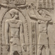 Hieroglyphic carvings on an Egyptian temple wall — Stock Photo #5632539