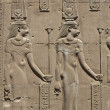 Hieroglyphic carvings on an Egyptian temple wall — ストック写真