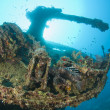 Gun on a the stern of a large shipwreck — Stok fotoğraf