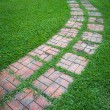 Curved path on a lawn area — Stok fotoğraf