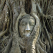 Buddha head Ancient stone carvings — ストック写真