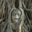 Buddha head Ancient stone carvings — Stockfoto