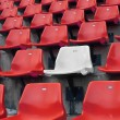 White in red seats — Photo
