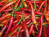 Pepe rosso — Foto Stock