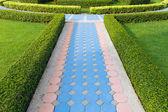Blue path — Stock Photo