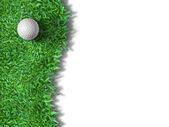 Bola branca na grama verde isolada — Foto Stock