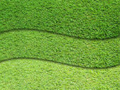 Three layer of green grass — Stock Photo