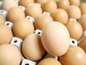 Many brown eggs — Stock Photo