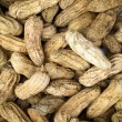 Boiled peanuts - Stockfoto