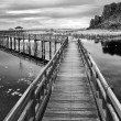 Boardwalks on the lake black and white — Photo