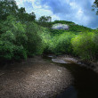River in mangrove forest - Stock Photo
