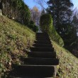 Stairs in the garden - Stock Photo