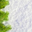 Winter forest background — Stock Photo #5458173