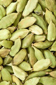 Cardamom whole — Stock Photo