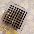 Stock Photo: Sewer lid