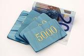 Copeaux de billets de banque — Photo