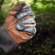 Stock Photo: Glove