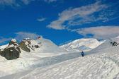Antarctic scenery, snow and blue sky — Stock Photo