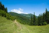 Berglandschaft — Stockfoto