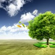 Ecology concept. tree with recycle arrows — Stock Photo