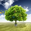 Green tree growing out of a bulb — Stock Photo #5706818